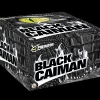 Lesli – Black Caiman