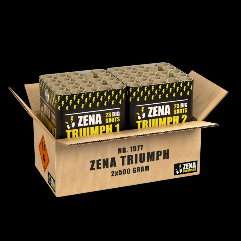 Triumph Verbundfeuerwerk von Zena - Feuerwerk einfach online kaufen im Pyrographics Feuerwerkshop
