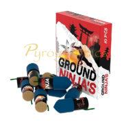Lesli – Ground Ninja's